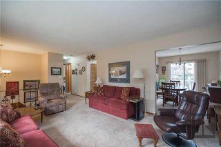 Photo 3: 427 Redonda Street in Winnipeg: East Transcona Residential for sale (3M)  : MLS®# 1820545