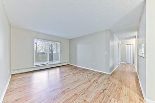 Photo 11: 103 11 Dover Point SE in Calgary: Dover Apartment for sale : MLS®# A1083330