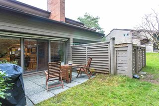 "Photo 25: 4035 VINE Street in Vancouver: Quilchena Townhouse for sale in ""Arbutus Village"" (Vancouver West)  : MLS®# R2557670"