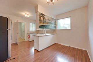 Photo 14: 12123 61 Street NW in Edmonton: House for sale : MLS®# E4166111