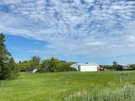 Photo 11:  in Killarney: Agriculture for sale : MLS®# 202116569