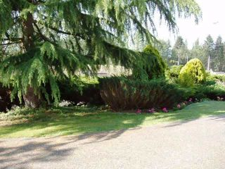 Photo 14: 14133 56A Ave in Surrey: Home for sale
