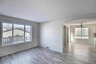 Photo 10: 253 Elgin Way SE in Calgary: McKenzie Towne Detached for sale : MLS®# A1087799