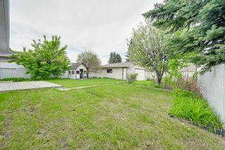 Photo 39: 10916 36A Avenue in Edmonton: Zone 16 House for sale : MLS®# E4246893