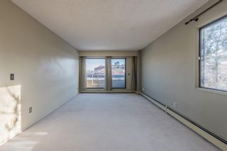 Photo 15: 302 1222 Kensington Close NW in Calgary: Hillhurst Apartment for sale : MLS®# A1056471