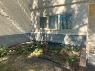 Photo 21: 112 18004 95 Avenue in Edmonton: Zone 20 Condo for sale : MLS®# E4262690