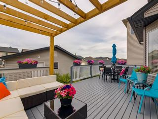 Photo 39: 180 SILVERADO Way SW in Calgary: Silverado Detached for sale : MLS®# A1016012