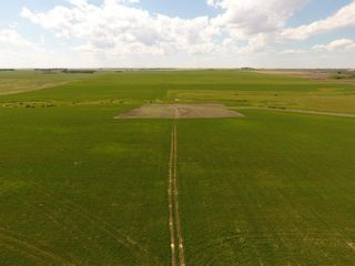 Photo 5: ON Range Road 12 in Rural Rocky View County: Rural Rocky View MD Commercial Land for sale : MLS®# A1116953