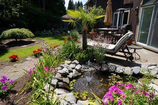 "Photo 48: 11648 HYLAND Drive in Delta: Sunshine Hills Woods House for sale in ""SUNSHINE HILLS"" (N. Delta)  : MLS®# F1417122"