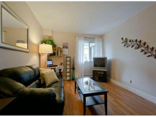 "Photo 8: 304 1381 MARTIN Street: White Rock Condo for sale in ""Chestnut Village"" (South Surrey White Rock)  : MLS®# F1410239"