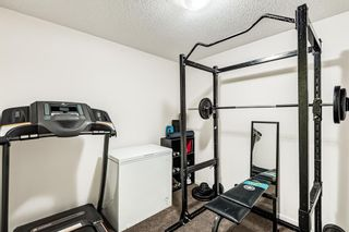 Photo 28: 3203 279 Copperpond Common SE in Calgary: Copperfield Apartment for sale : MLS®# A1117185