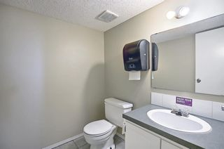 Photo 26: 91 Chancellor Way NW in Calgary: Cambrian Heights Detached for sale : MLS®# A1119930