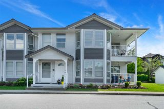 Photo 1: 40 12296 224 STREET in Maple Ridge: East Central Condo for sale : MLS®# R2378494