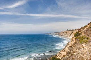 Photo 56: Residential for sale (La Jolla Shores)  : 5 bedrooms : 8519 La Jolla Shores Dr in La Jolla