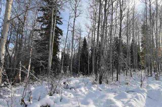 "Photo 14: 1 3000 DAHLIE Road in Smithers: Smithers - Rural Land for sale in ""Mountain Gateway Estates"" (Smithers And Area (Zone 54))  : MLS®# R2280132"