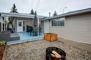 Photo 30: 527 MURPHY Place NE in Calgary: Mayland Heights Detached for sale : MLS®# C4297429
