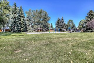 Photo 35: 44 DEERMOSS Crescent SE in Calgary: Deer Run Detached for sale : MLS®# A1018269