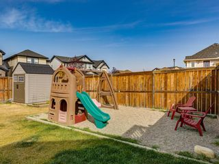 Photo 46: 1350 PRAIRIE SPRINGS Park SW: Airdrie Detached for sale : MLS®# A1037776