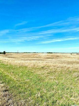 Photo 6: RM of Corman Park 68.9 Acres in Corman Park: Lot/Land for sale (Corman Park Rm No. 344)  : MLS®# SK870176