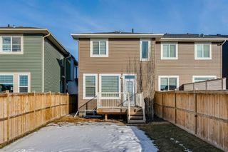 Photo 45: 209 Auburn Meadows Place SE in Calgary: Auburn Bay Semi Detached for sale : MLS®# A1072068