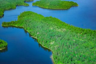 Photo 1: Lot 14 Five Point Island in South of Kenora: Vacant Land for sale : MLS®# TB212086