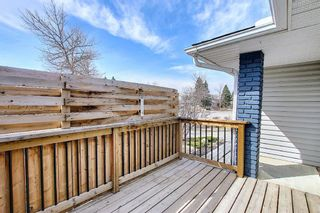 Photo 45: 315 Banister Drive: Okotoks Detached for sale : MLS®# A1089358