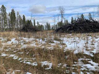Photo 9: TOWNSHIP ROAD 290 WEST OF BOTTREL in Rural Rocky View County: Rural Rocky View MD Land for sale : MLS®# A1051910