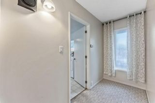 Photo 19: 8828 34 Avenue NW in Calgary: Bowness Detached for sale : MLS®# A1075550