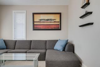 Photo 25: 160 Brightonstone Gardens SE in Calgary: New Brighton Detached for sale : MLS®# A1009065