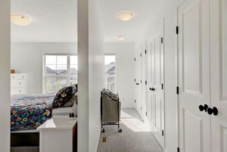 Photo 24: 123 Masters Heights SE in Calgary: Mahogany Detached for sale : MLS®# A1050411