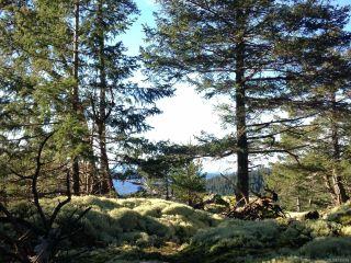 Photo 13: LT 2 Lakota Rd in LASQUETI ISLAND: Isl Lasqueti Island Land for sale (Islands)  : MLS®# 749869