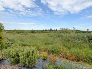 Photo 42: 7013 Beach View Crt in SAANICHTON: CS Island View House for sale (Central Saanich)  : MLS®# 818670