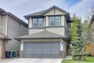 Photo 1: 133 WALDEN Square SE in Calgary: Walden Detached for sale : MLS®# A1101380