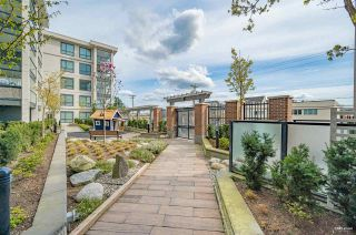 """Photo 15: 213 5638 201A Street in Langley: Langley City Condo for sale in """"THE CIVIC"""" : MLS®# R2562053"""