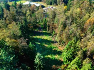 Photo 13: 30255 BRACKLEY Avenue in Mission: Stave Falls Land for sale : MLS®# R2527114