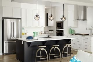 Photo 5: 443 CRYSTALLINA NERA Drive in Edmonton: Zone 28 House for sale : MLS®# E4224535