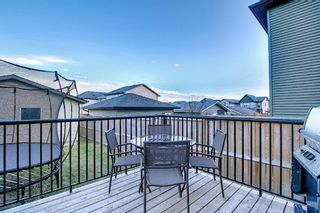 Photo 45: 82 Nolan Hill Drive NW in Calgary: Nolan Hill Detached for sale : MLS®# A1042013
