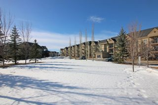 Photo 34: 302 52 CRANFIELD Link SE in Calgary: Cranston Apartment for sale : MLS®# A1074449