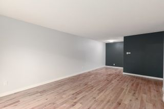 """Photo 5: 102 3787 W 4TH Avenue in Vancouver: Point Grey Condo for sale in """"ANDREA APARTMENTS"""" (Vancouver West)  : MLS®# R2594151"""
