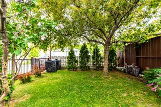 Photo 6:  in Edmonton: Zone 04 House for sale : MLS®# E4248563