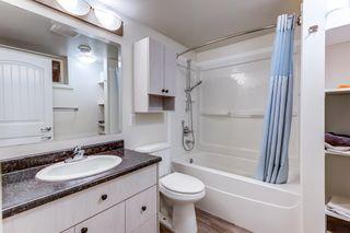 Photo 26: 4030 117 Avenue in Edmonton: Zone 23 House for sale : MLS®# E4246156