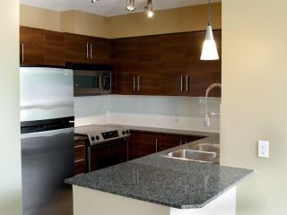 """Photo 3: 302 833 AGNES Street in New Westminster: Downtown NW Condo for sale in """"NEWS"""" : MLS®# V855336"""