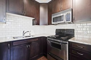 Photo 11: 301 3704 15A Street SW in Calgary: Altadore Apartment for sale : MLS®# A1153007