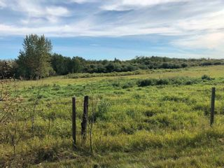 Photo 13: Rge Rd 231 North of Twp Rd 564: Rural Sturgeon County Rural Land/Vacant Lot for sale : MLS®# E4262842