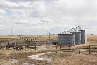 Photo 44: 255122 RANGE ROAD 283 in Rural Rocky View County: Rural Rocky View MD Detached for sale : MLS®# C4299802