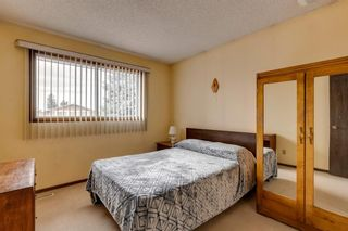 Photo 22: 147 Templevale Place NE in Calgary: Temple Detached for sale : MLS®# A1144568