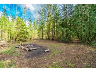 Photo 8: 8974 CLAY Street in Mission: Mission BC House for sale : MLS®# R2358300