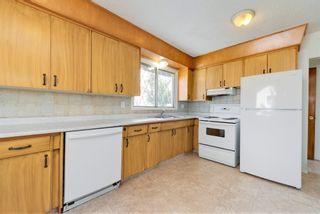 Photo 8: 8907 169 Street in Edmonton: Zone 22 House for sale : MLS®# E4266250