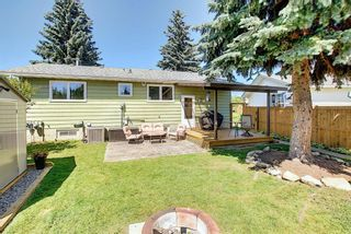 Photo 38: 408 QUEENSLAND Circle SE in Calgary: Queensland Detached for sale : MLS®# A1020270