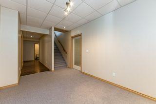 Photo 23: 3216 TREDGER Close in Edmonton: Zone 14 House for sale : MLS®# E4233312